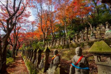 富山市民俗民芸村、長慶寺五百羅漢の紅葉2019