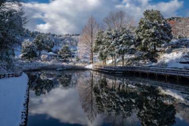 氷見市ふれあいの森公園の雪景色2020