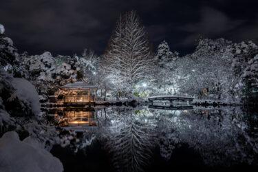 高岡古城公園の美しく幻想的な夜の雪景色2021